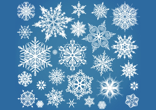 Snow flake Elements Vector