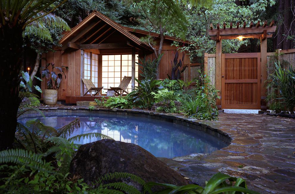 tropical backyard pool design