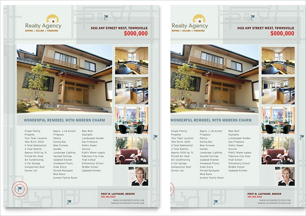 Real Estate Agent Flyer Design