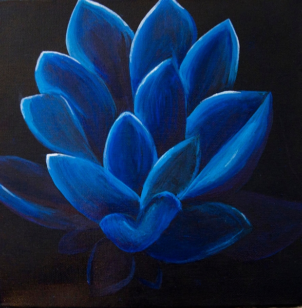 blue lotus flower drawing