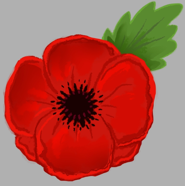 20 flower drawings sketches design trends premium psd vector red poppy flower drawing mightylinksfo