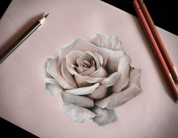 3d pencil drawings of rose