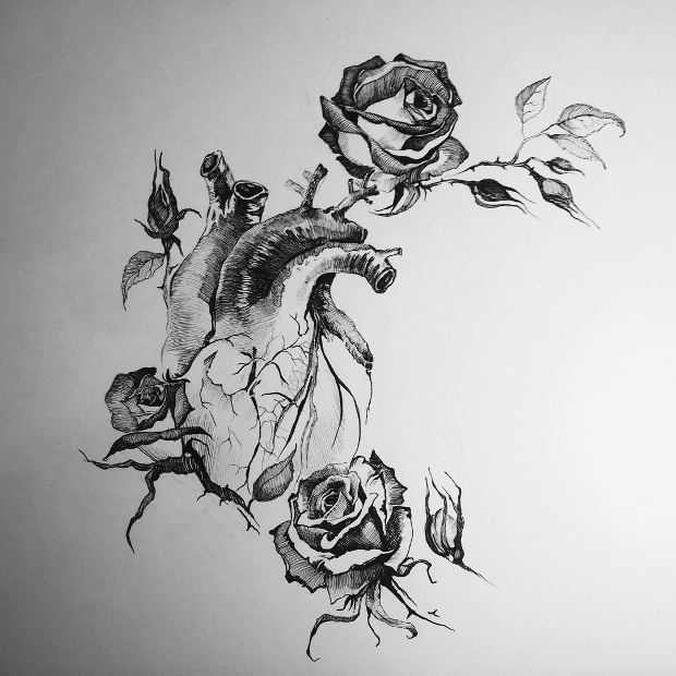 20+ Rose Drawings , Sketches | Design Trends - Premium PSD ...
