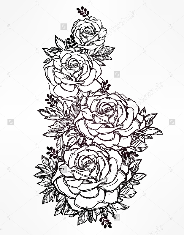 Out Line Art Design : Rose drawings sketches design trends premium psd