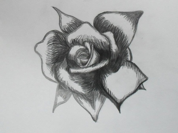 Simple Black and White Rose Drawing