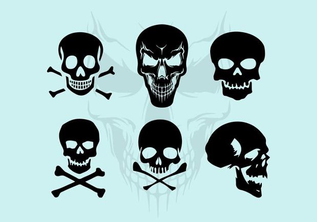 vector skull silhouette