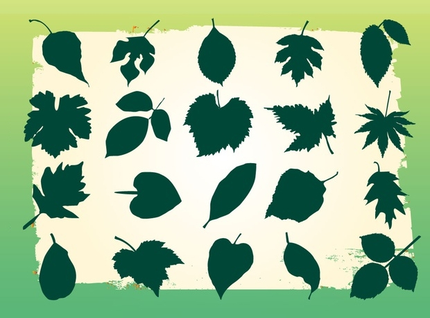 green leaf silhouette