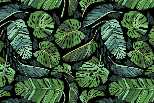 Tropical Leaf Pattern