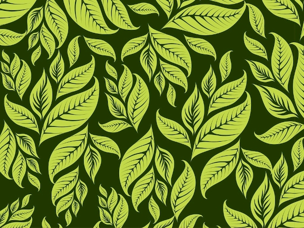 Nature Leaf Pattern