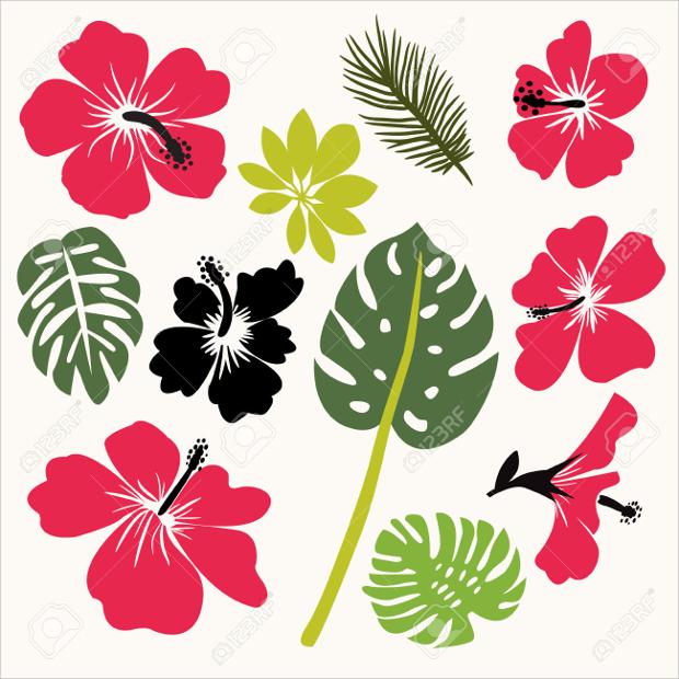 Hibiscus Flower Clipart