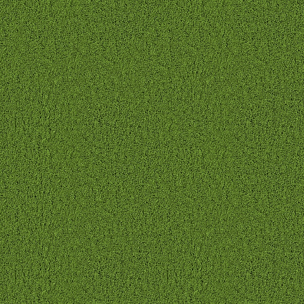 carpet grass texture