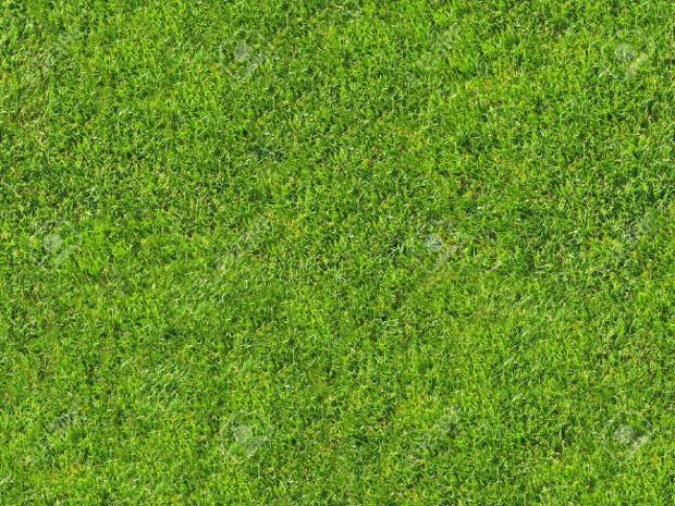 3d grass texture design