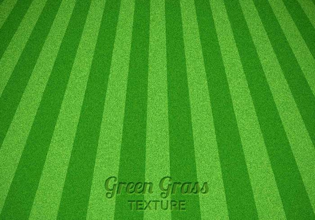 mowed grass texture