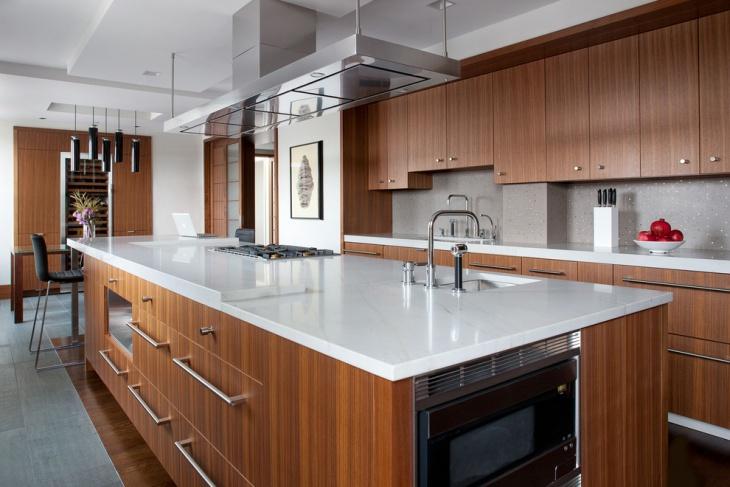 Penthouse Kitchen Countertop Design