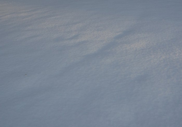 high resolution snow texture