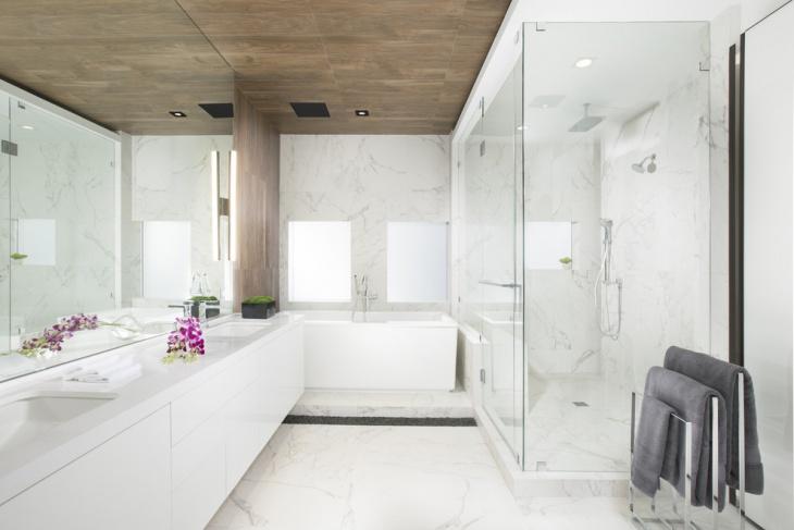 Small Bathroom Ceiling Design