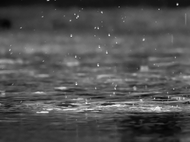 Black and White Raindrops Photography