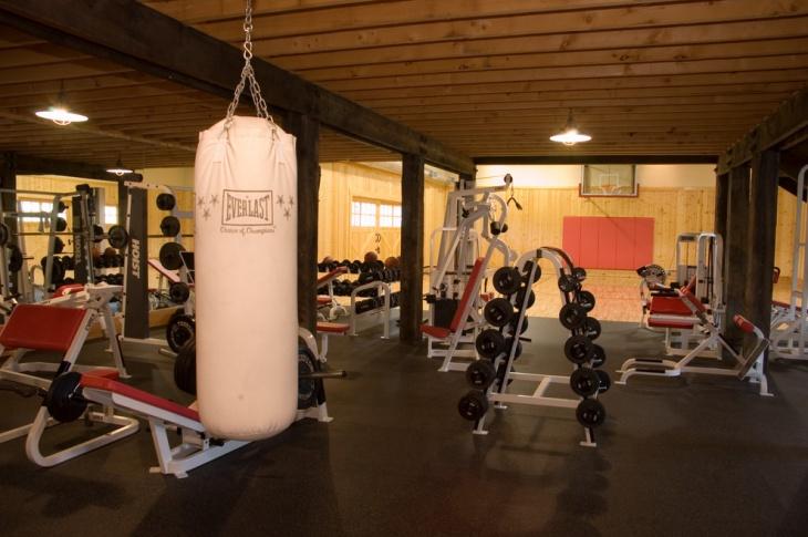 farmhouse gym equipment design