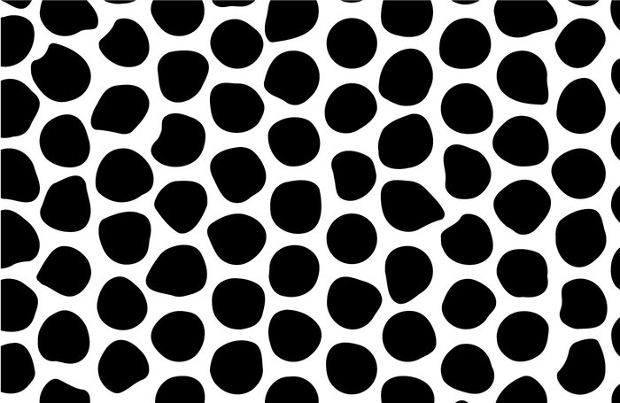 black and white irregular circle pattern