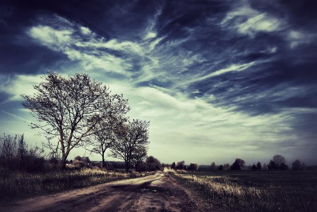 Nature Landscape Photography