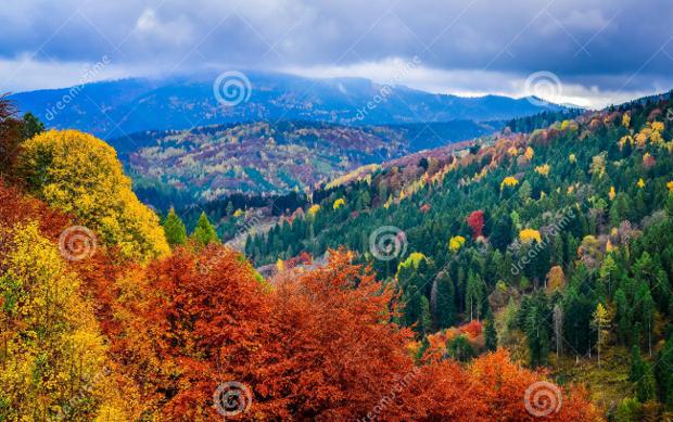 Colorful Autumn Landscape Photography