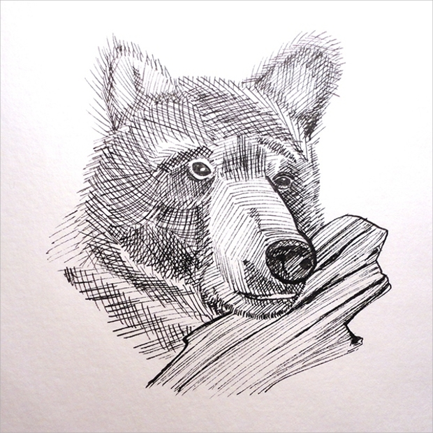 fine liner animal drawing