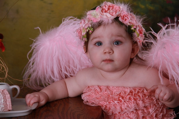 angel baby photography