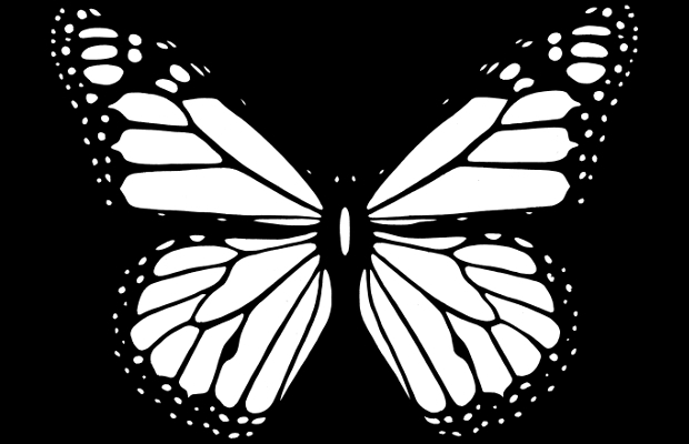 black and white butterfly clipart