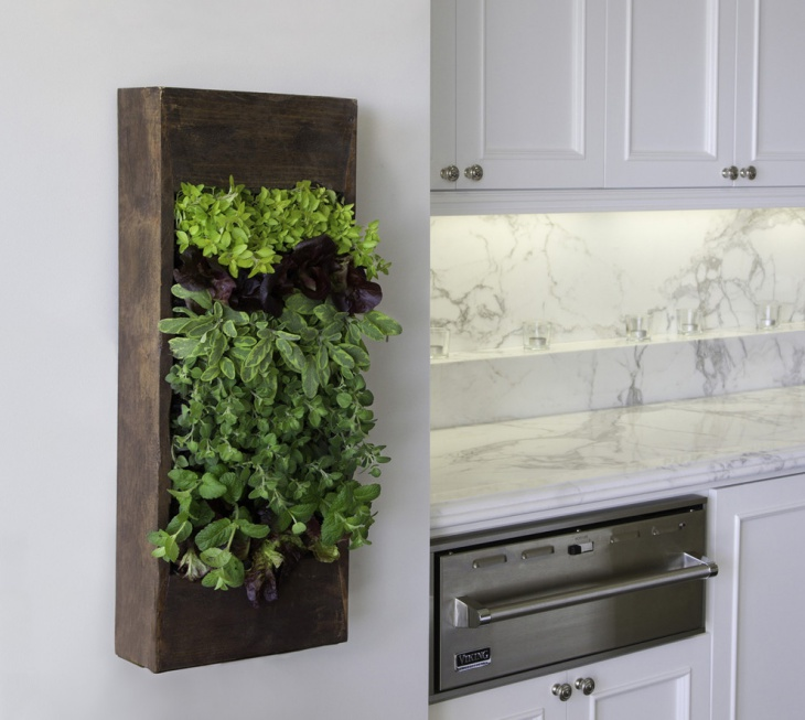 Small Hanging Herb Garden Idea