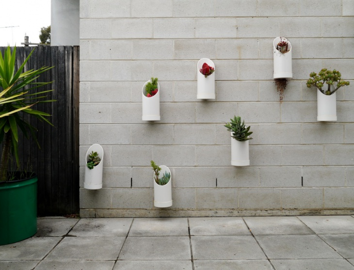 Modern Wall Herb Design