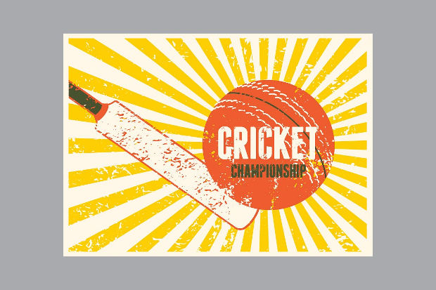 Vintage Cricket Typography Poster