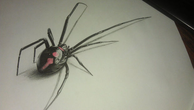 3d black spider drawing