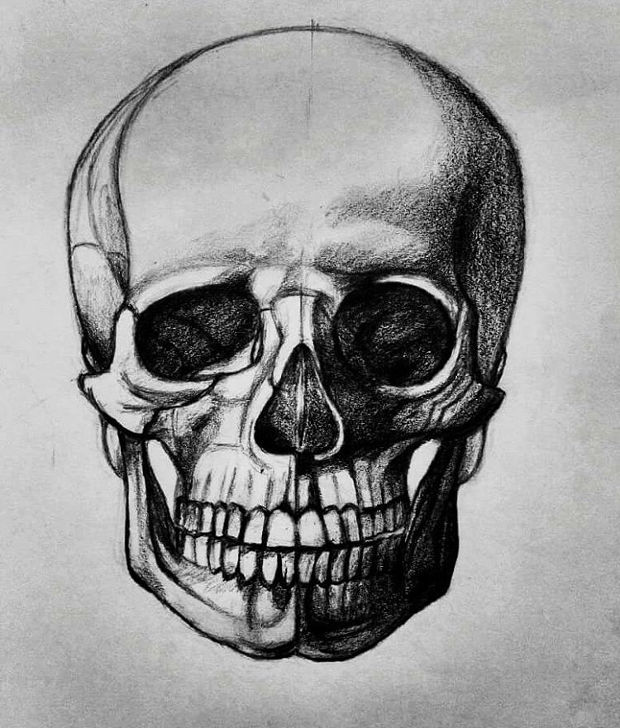 3d black and white skull drawing