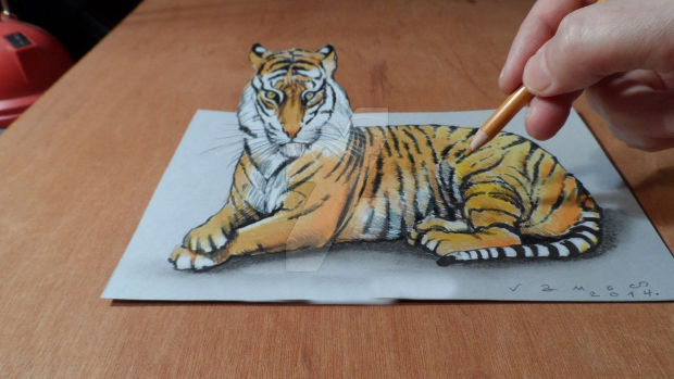 3d animal tiger drawing