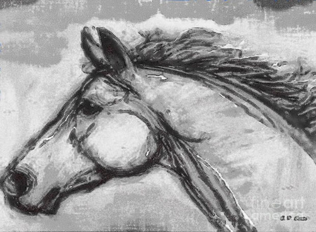 3d horse head drawing