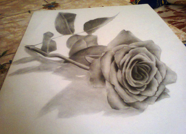 3d rose pencil drawing