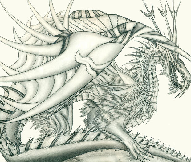 Sea Dragon Pencil Drawing
