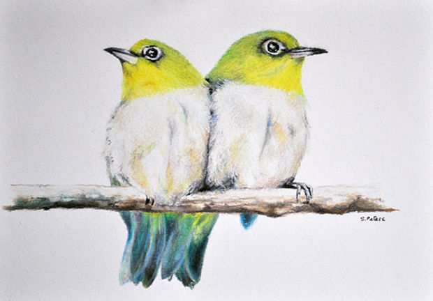 Birds Colored Pencil Drawing