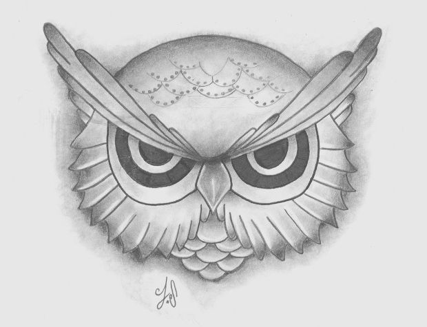 Small Owl Pencil Drawing