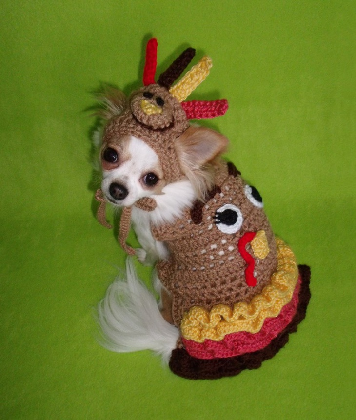 crochit thanksgiving outfit for dog