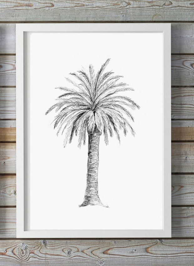 how to draw a palm tree with pencil