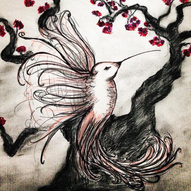 cherry blossom tree drawing pencil wwwimgkidcom the