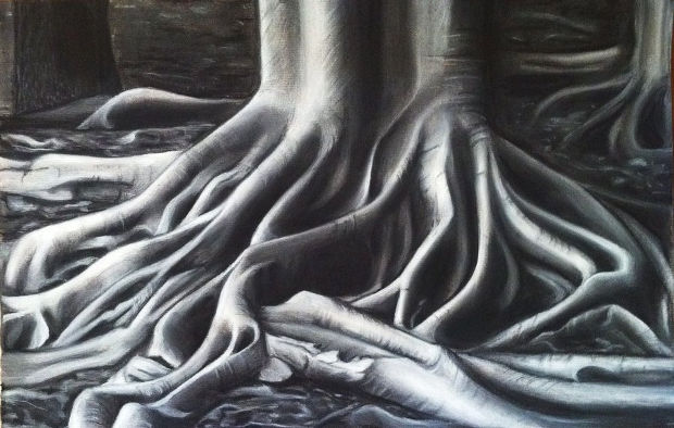 Tree Roots Pencil Drawing