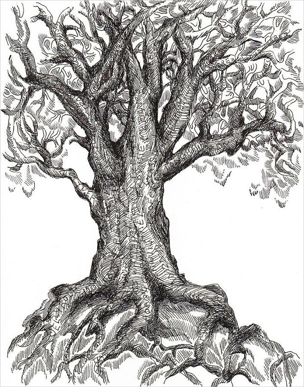 musical tree roots drawing