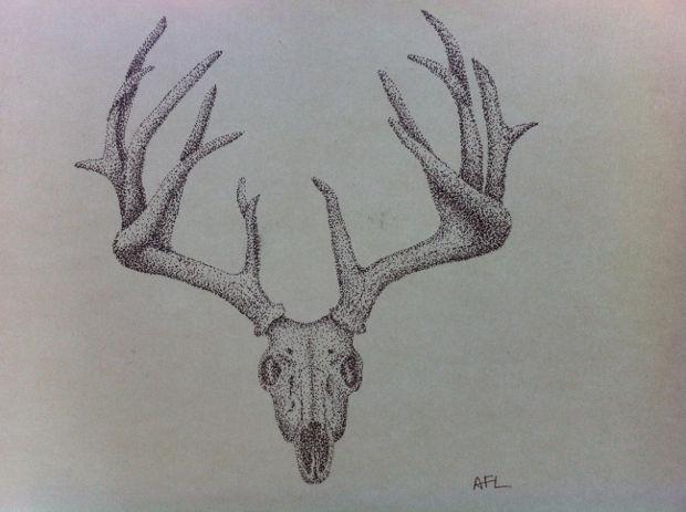 Deer Skull Pen Drawing