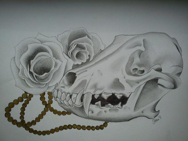 wolf skull roses drawing