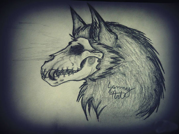 Scary Wolf Skull Drawing