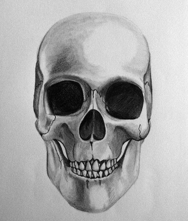 human skull pencil drawing