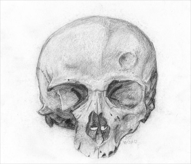 Simple Cracked Skull Drawing