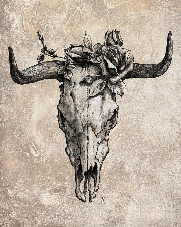 Bull Skull Rose Drawing